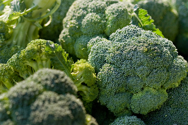 Benefits of Magnesium - Brocolli and other green leafies are good sources of magnesium