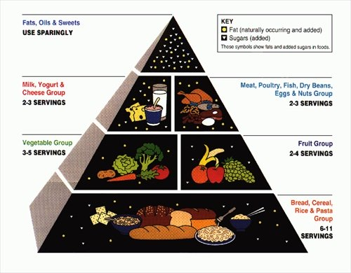 1992 USDA Food Pyramid - the Shape Before MyPlate came along